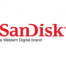 Sandisk DUAL DRIVE GO USB TYPE-C FLASH DRIVE 256 (SDDDC3-256G-G46G)