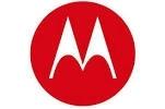 Motorola Ram 2.43In X 1.31In Diamond Ball Base W/ 1in BALL FOR THE TC7X VEHICLE CRADLE Ram-B-238U