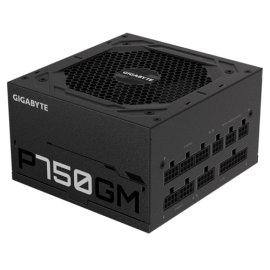 Gigabyte P750GM 750W ATX PSU Power Supply 80+ Gold >90% Modular 2x8 Pin120mm Fan Black Flat Cables Single +12V Rail Japanese >100K Hrs (GP-P750GM)