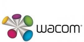 Wacom Bamboo Ink 2Nd Gen Gray Stylus Cs-323A/G0-C